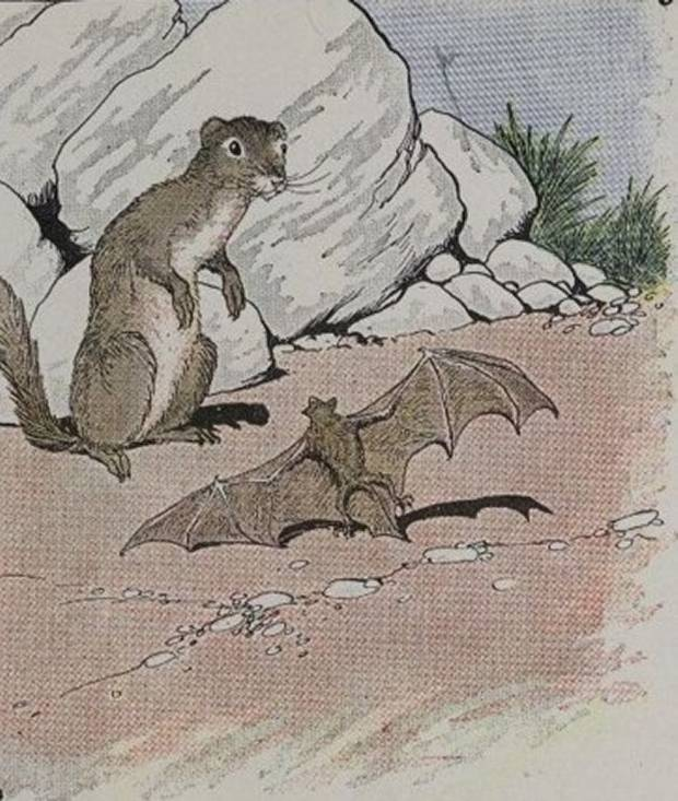 Aesop's Fables - The Bat And The Weasels By Milo Winter