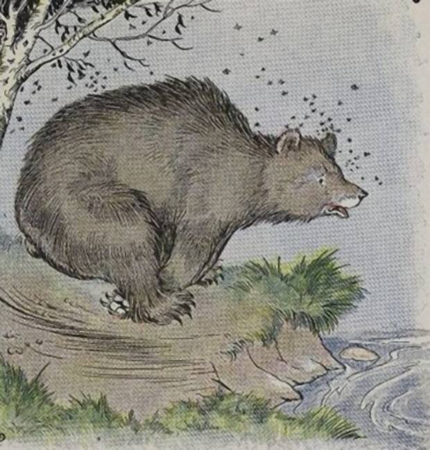 Aesop's Fables - The Bear And The Bees By Milo Winter