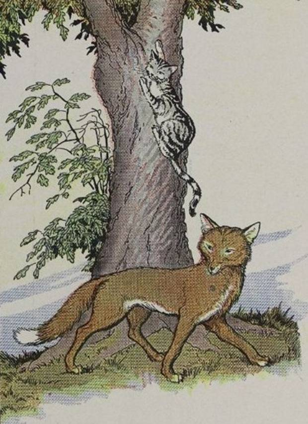 Aesop's Fables - The Cat And The Fox By Milo Winter