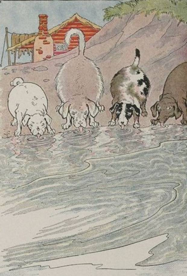 Aesop's Fables - The Dogs And The Hides By Milo Winter