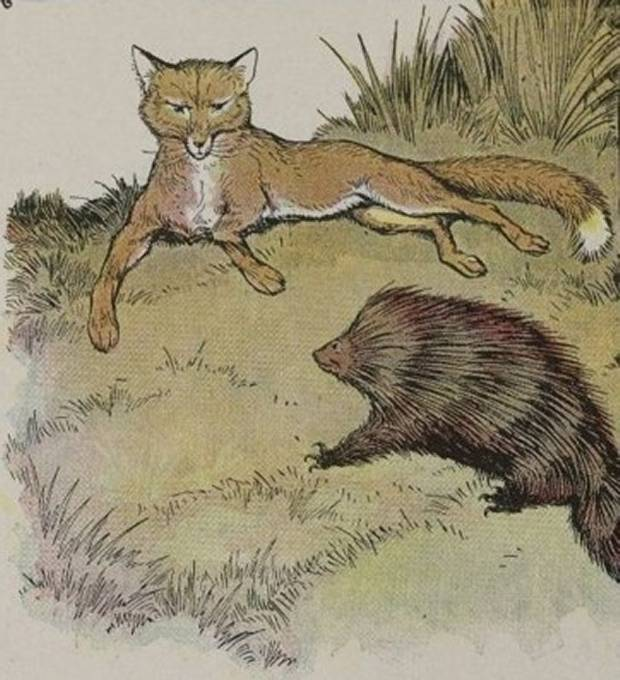 Aesop's Fables - The Fox And The Hedgehog By Milo Winter