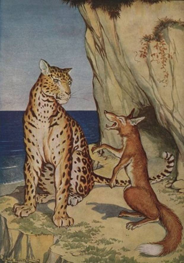 Aesop's Fables - The Fox And The Leopard By Milo Winter