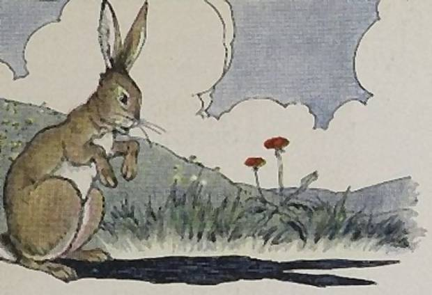 Aesop's Fables - The Hare And His Ears By Milo Winter