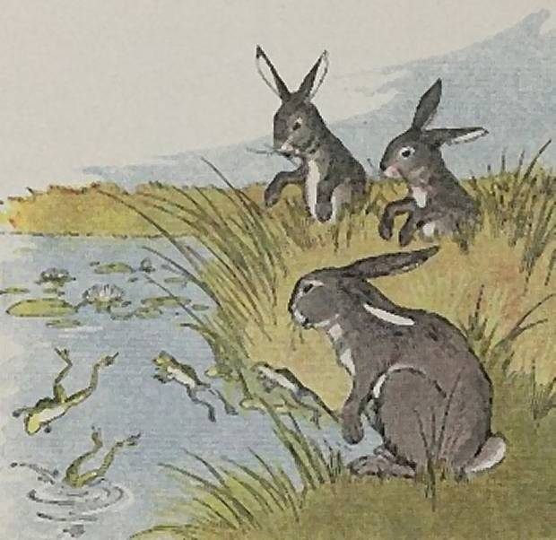 Aesop's Fables - The Hares And The Frogs By Milo Winter