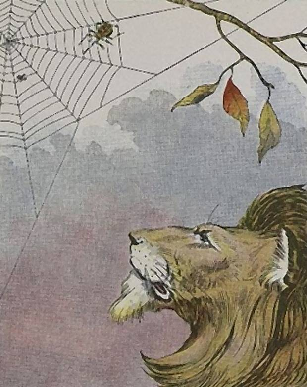 Aesop's Fables - The Lion And The Gnat By Milo Winter