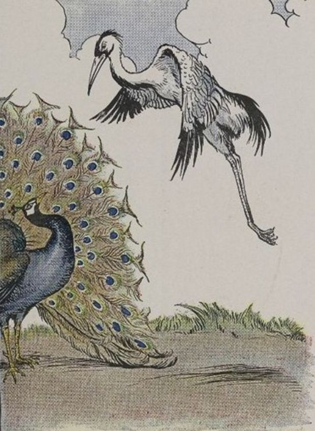 Aesop's Fables - The Peacock And The Crane By Milo Winter