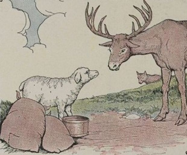 Aesop's Fables - The Stag, The Sheep And The Wolf By Milo Winter