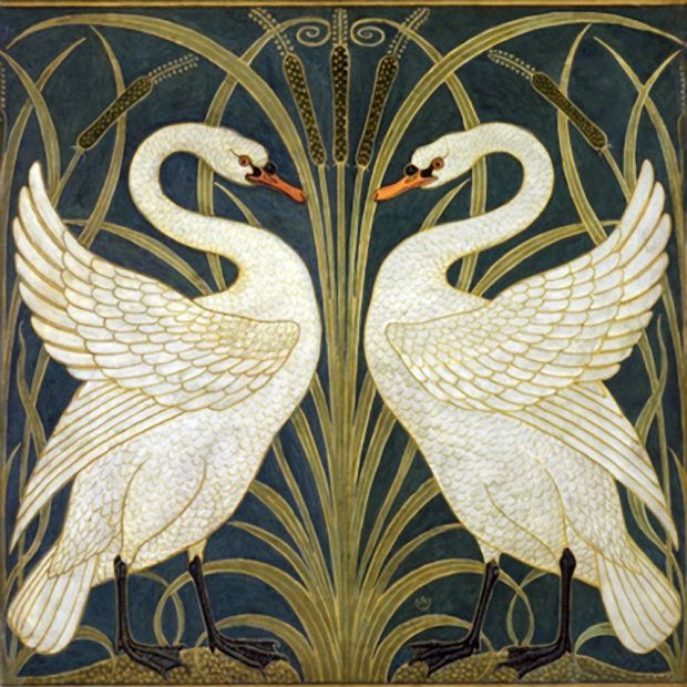 Decorative Swans By Walter Crane
