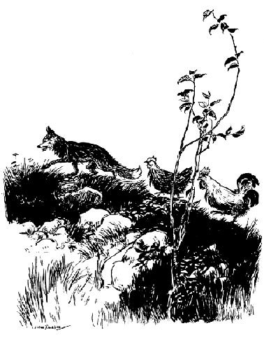 English Fairy Tale - Illustration For Henny-Penny By Arthur Rackham
