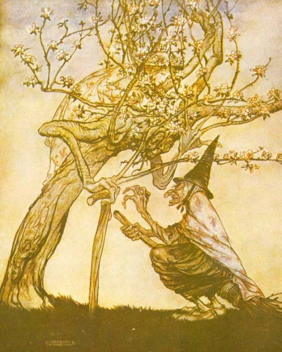 English Fairy Tale - Illustration For The Two Sisters by Arthur Rackham