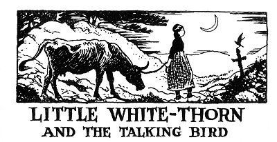 Folk Tale From Britanny - Title For Little White-Thorn And The Talking Bird