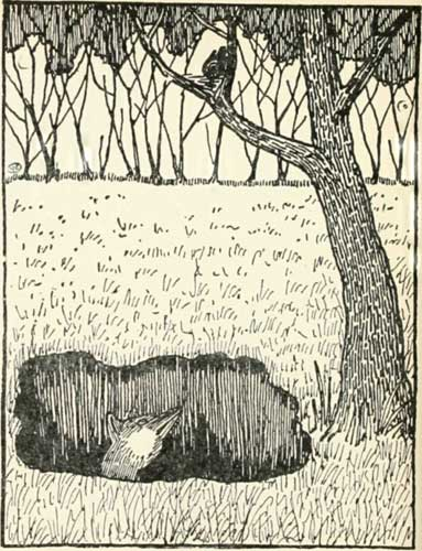 The Fox And The Blackbird - A Russian Folk Tale