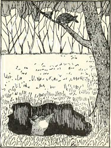 Russian Folk Tale - Illustration For The Fox And The Blackbird